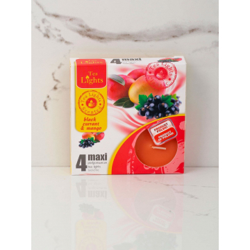 Podgrzewacze Zapachowe MAXI A4 bez rabatowe